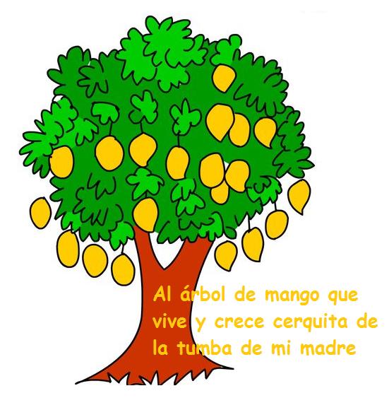 Arbol de mango mechudo apuntes de una cualquiera for Como crecen los arboles para ninos